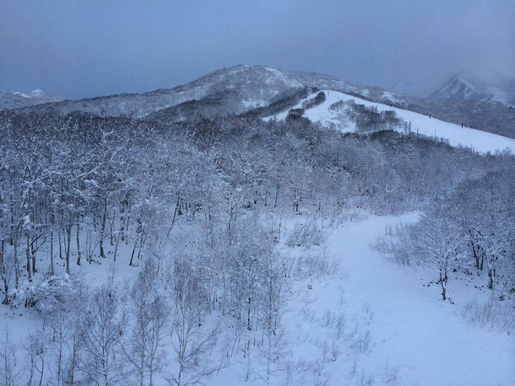 Taken in Hokkaido as well however these are horizontal photos. Hover over the photo and click on the arrows to the next picture!