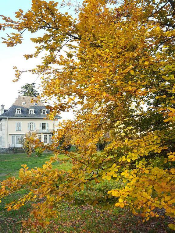 Envoyez-nous vos plus belles photos d'automne prises à Monthey,nous les publions volontiers.