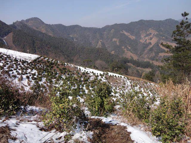 Album - Anhui - couleurs d'hiver