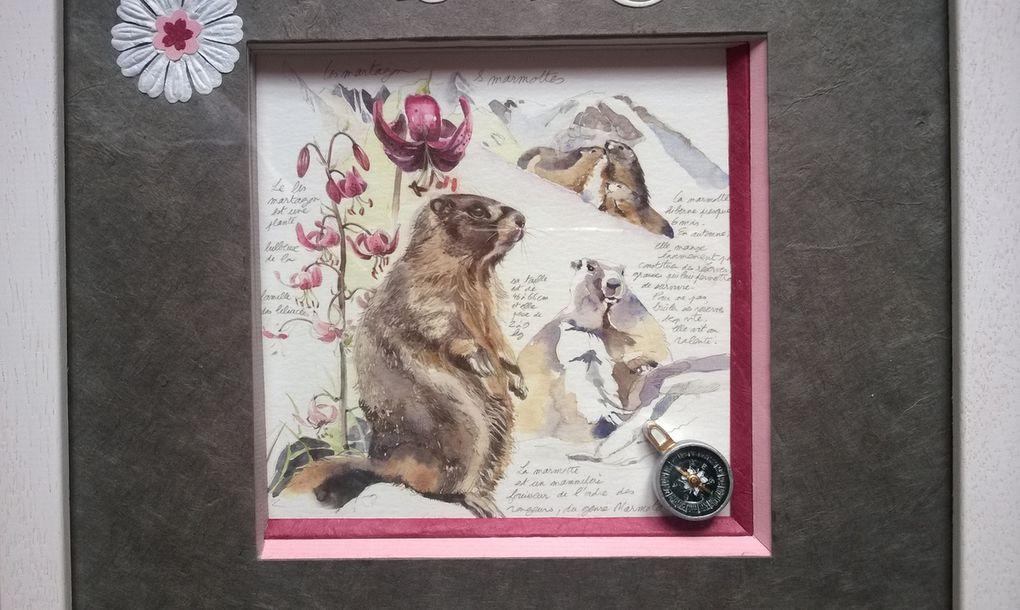 Encadrement savoyard tarines, gentianes et marmottes