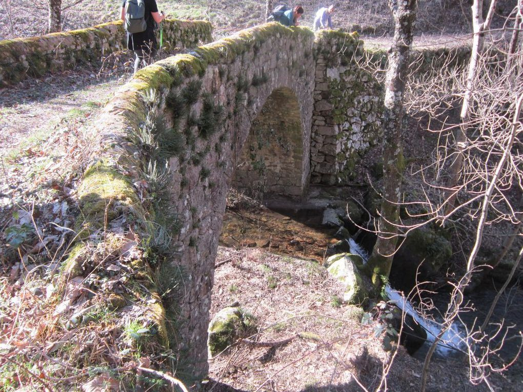 Dimanche 19 février : rando de Beauvène