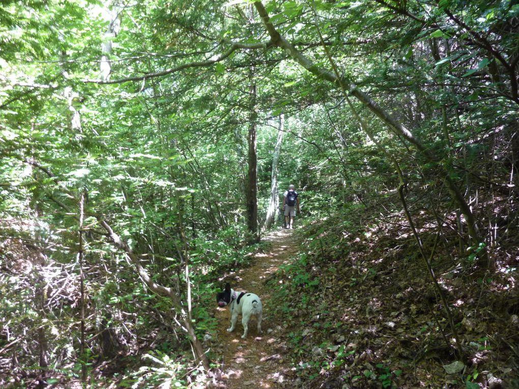 Ste Baume, la Grotte et le sentier merveilleux..