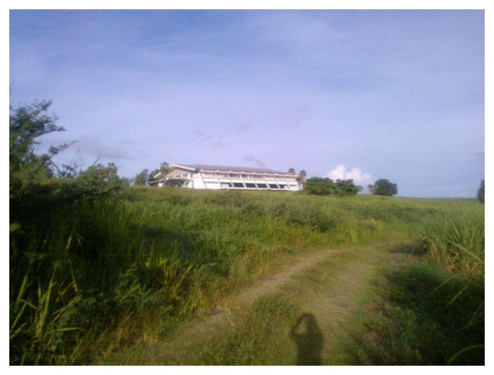 Quelques vues de notre petit parcours footing près de Thoraille Rivière Salée.