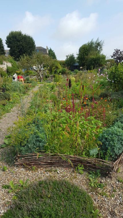 Visite du jardin de l'Herbarium de Saint-Valéry-sur-Somme