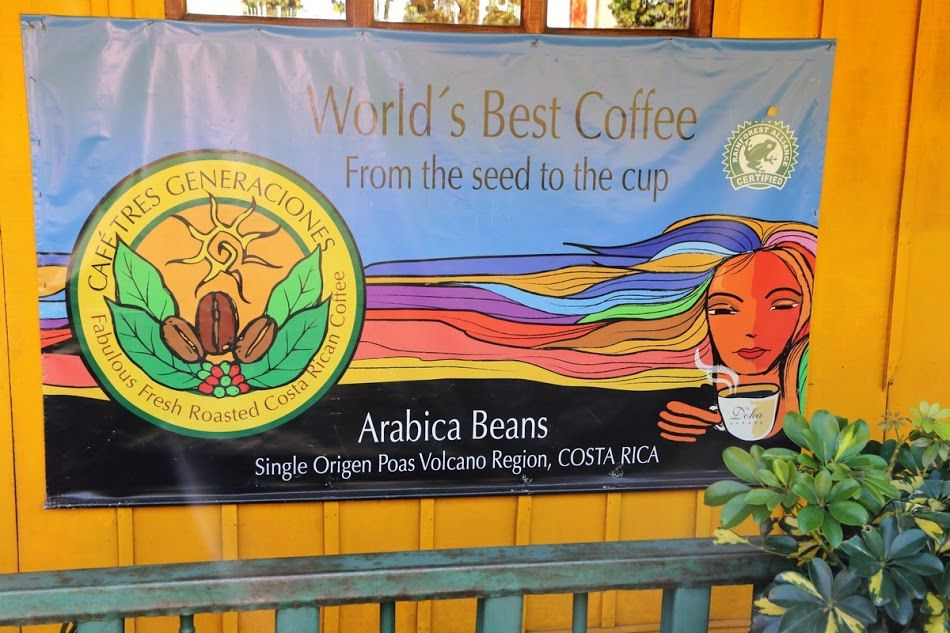 Le café...L'or du Costa Rica !