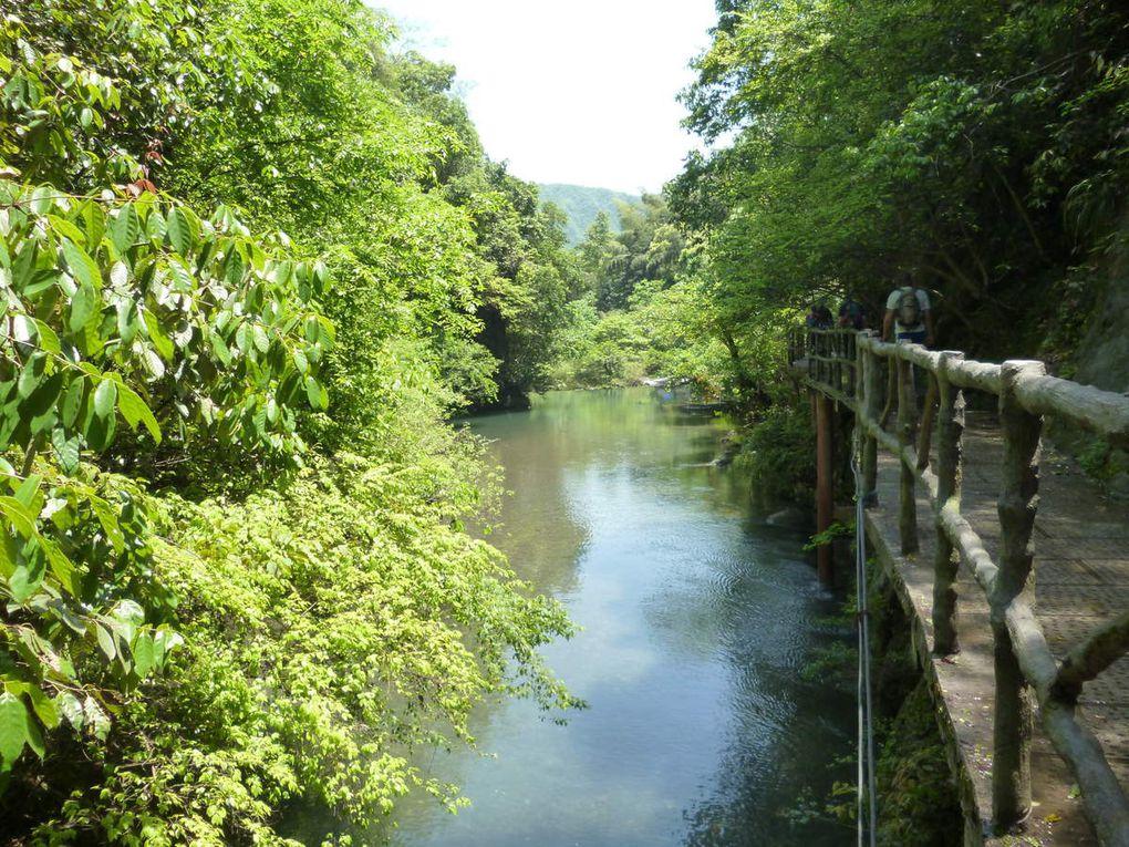 Petite promenade en forêt chinoise