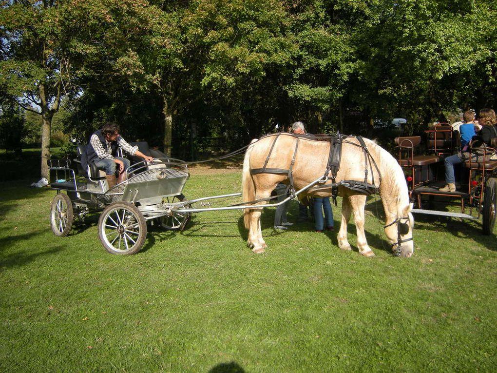 1er Rassemblement de véhicules et moto anciennes du 27 septembre 2015