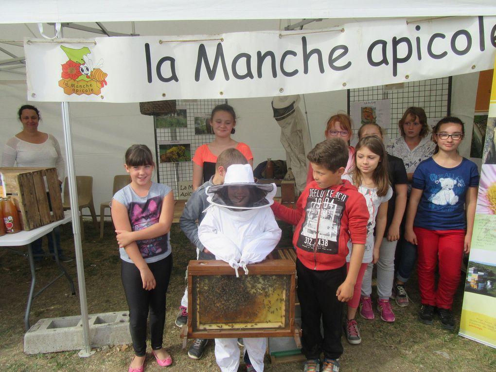 Les enfants sont impatients de voir les abeilles.