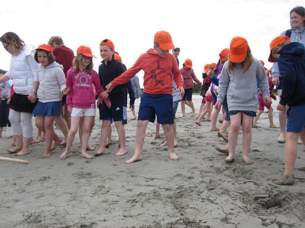 Randonnée dans la baie  : classes de GS/CP et CE1