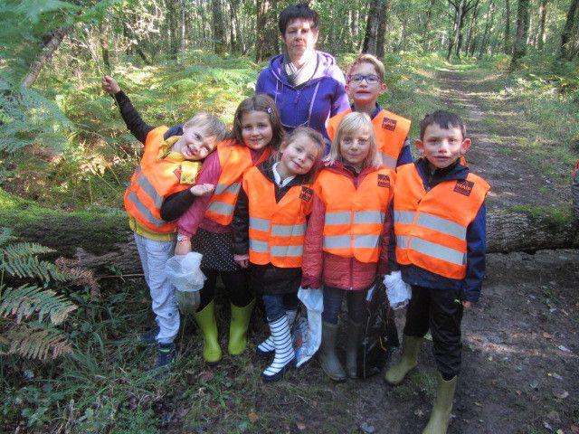 A la découverte de la forêt, avec les élèves de CP et de CE1