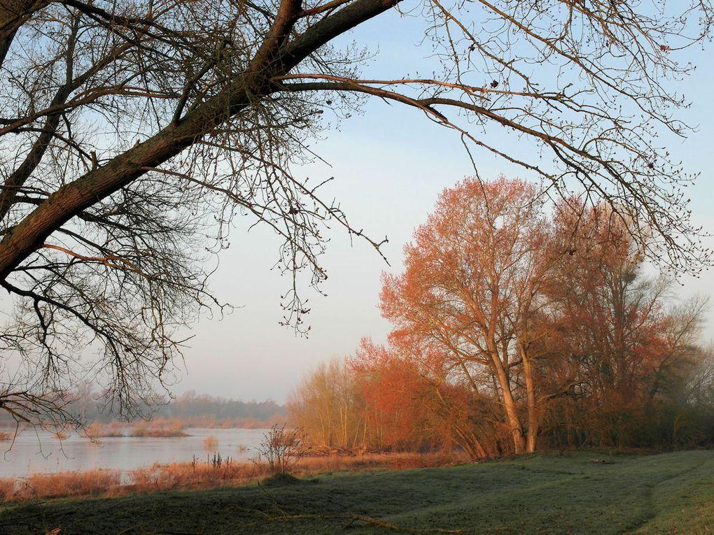 Planète environnement :  &quot&#x3B;Une nouvelle ZAD sur la Loire ?&quot&#x3B;
