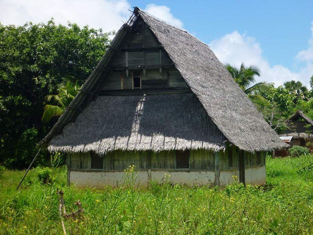 Des maisons traditionnelles à Kisar. Il en subsiste très peu alors qu'elles sont mieux adaptées à la chaleur que les maisons modernes en ciment et tôle ondulée.