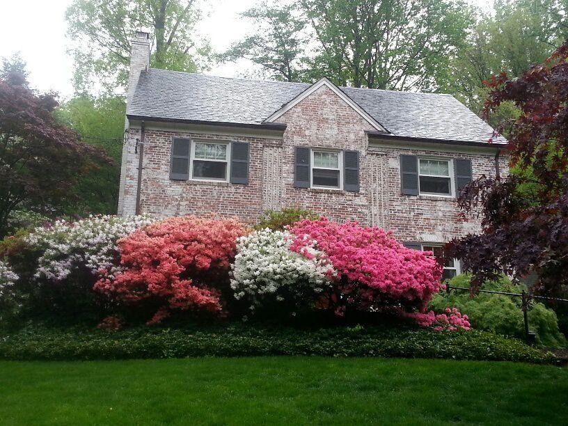 La Maison blanche, des maisons  fleuries, des rues de Georgetown