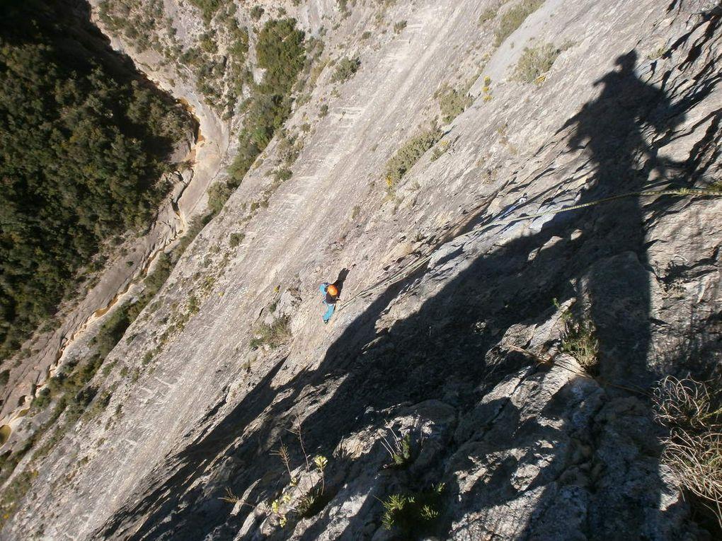 Pere Camins à la Roca Regina
