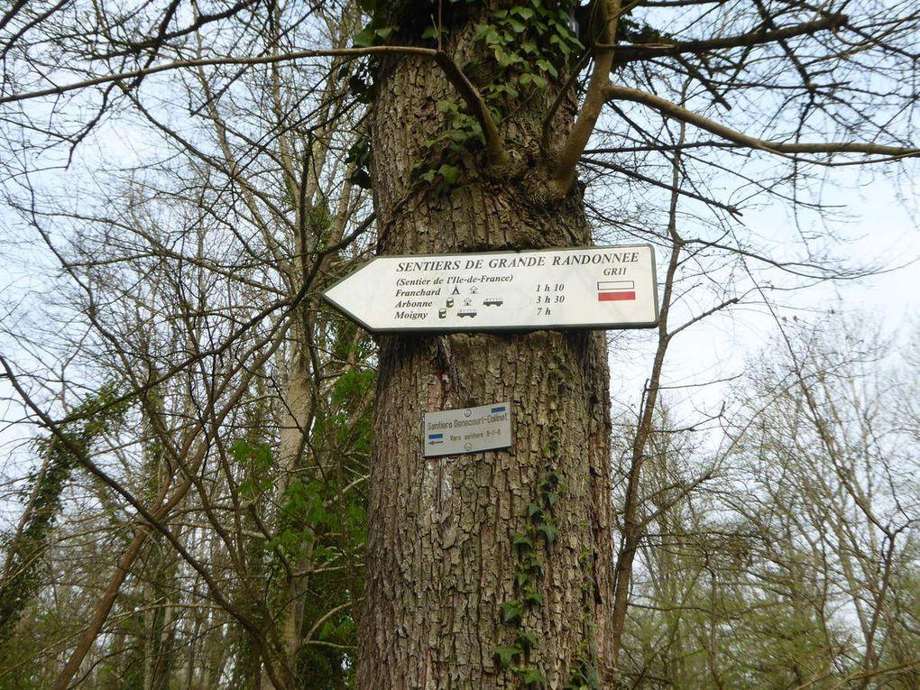 Randonnée forêt de Fontainebleau, circuit des Gorges de Franchard - 15,7 km.