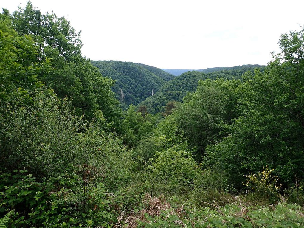 """viaduc des rochers noirs et vallée de la Luzège (ancien trajet du """"tacot"""" transcorrézien)"""