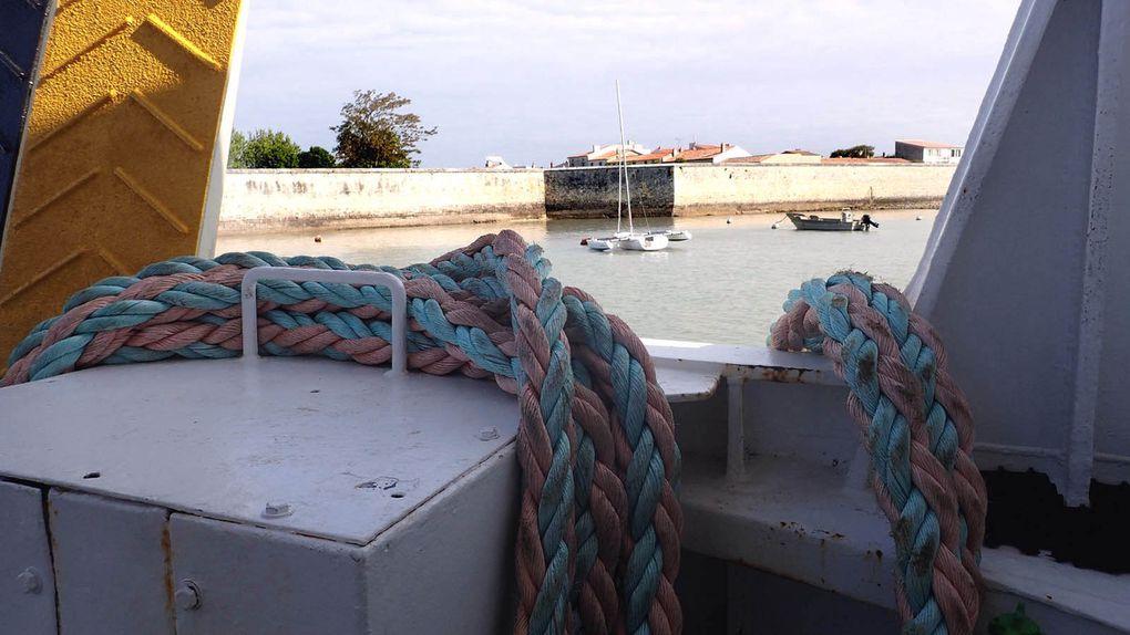 voyage à l'île d'Aix (Charente Maritime) mai 2015