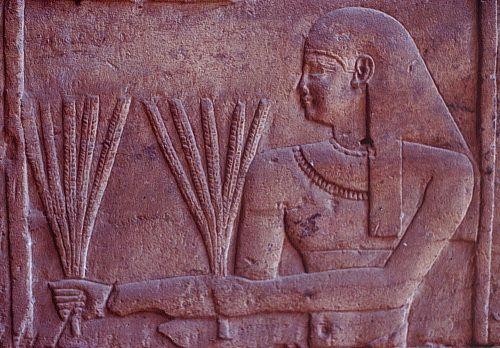 Maillons essentiels de l'économie, les paysans et quelques bons génies nourriciers, protecteurs des récoltes... (7) en Égypte ancienne !