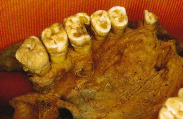 Les anciens Égyptiens mangeaient-ils comme nous ? Si vous êtes végétarien, probablement... ! (6) En Égypte antique !