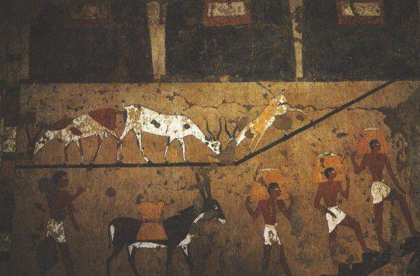 De l'ordre du divin, les travaux d'utilité publique, l'aménagement et l'entretien... En Égypte ancienne !