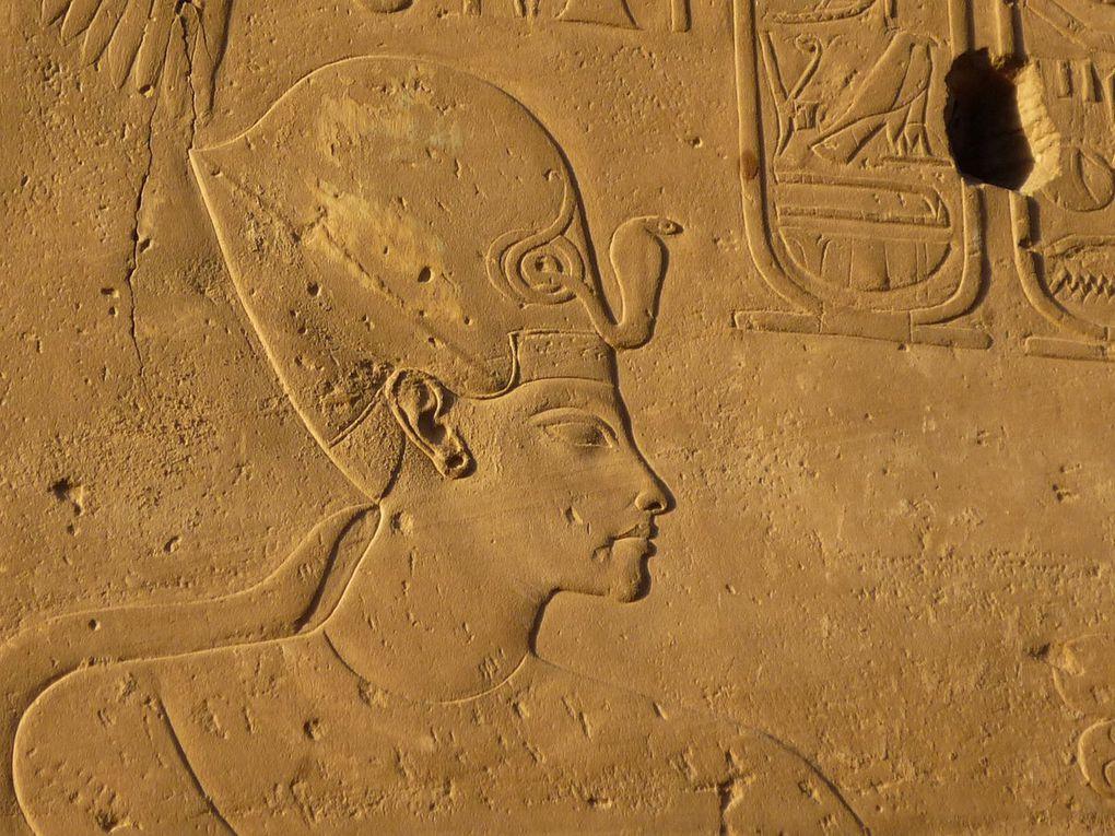 Assassiné, et cela avant même d'être pharaon, Zannanza, des espions à la cour... (6) En Égypte ancienne !
