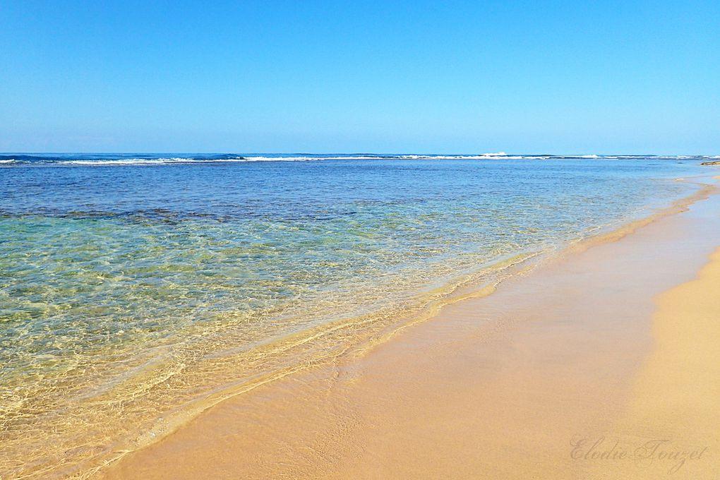 Hawaii, 3ème voyage au paradis