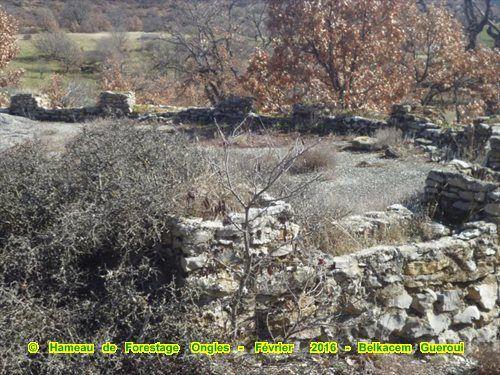hameau de forestage de Ongles (04) n°5