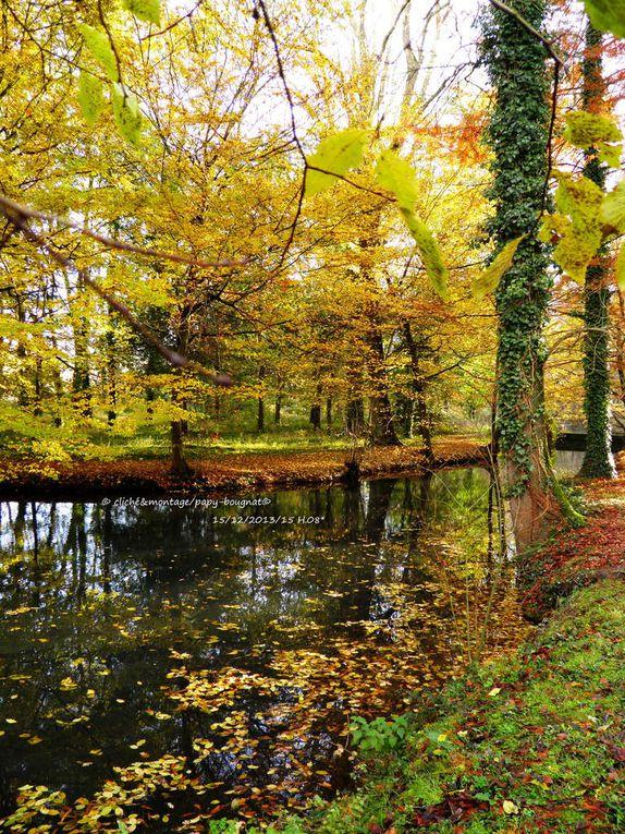 Bonjour l'automne ! Adieu l'été....................