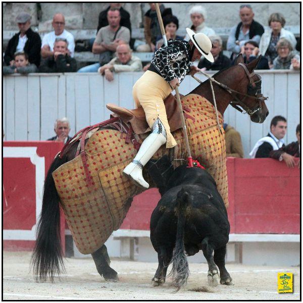 ... ARLES ... FERIA DU RIZ 2015 ... DIMANCHE 13 SEPTEMBRE (TARDE) ... DURE CORRIDA DE CEBADA GAGO AVEC 1 OREILLE POUR ALBERTO AGUILAR  ...