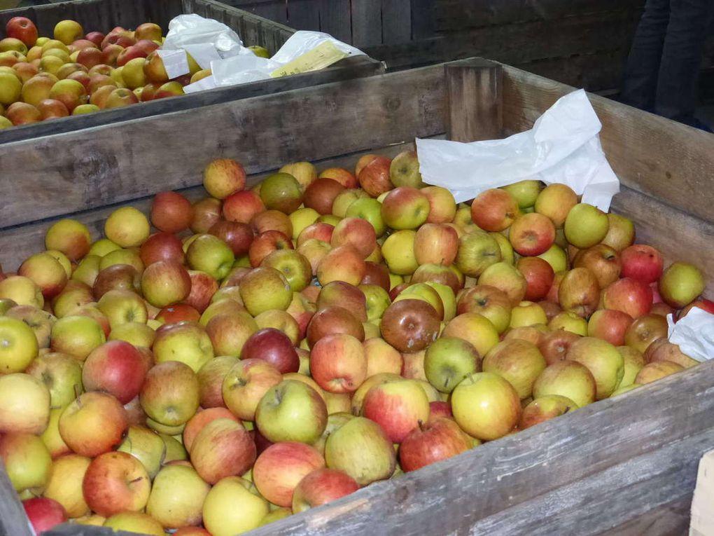 Les pommes, reines du marché, et les nombreux chalands
