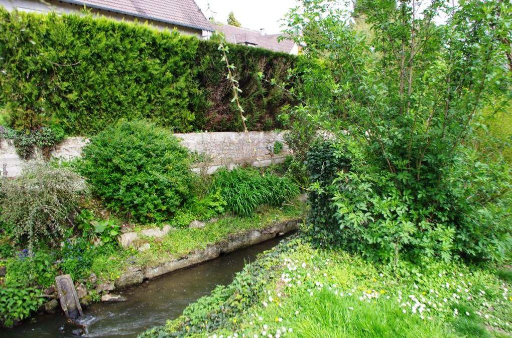 La promenade des petits ponts et des lavoirs à Chevreuse