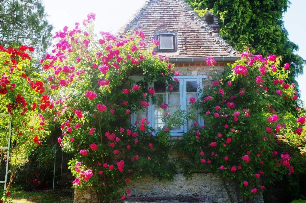 Images du 18 juin 2017 : visite des Jardins Henri Le Sidaner avec des photographies de la collégiale en deuxième plan