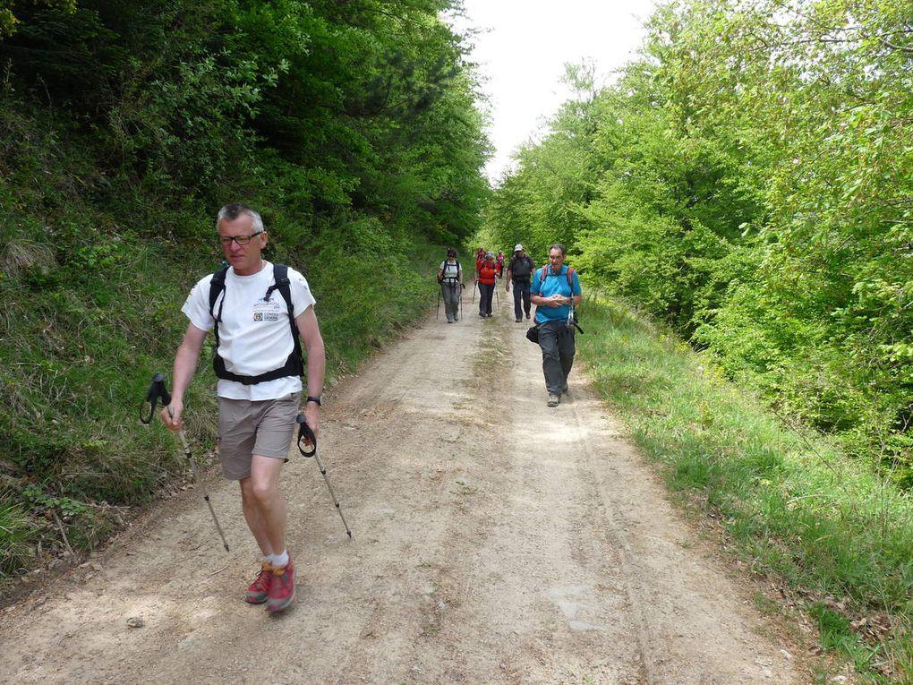 Cathares : Samedi 7 mai - Chateau de Puylaurens