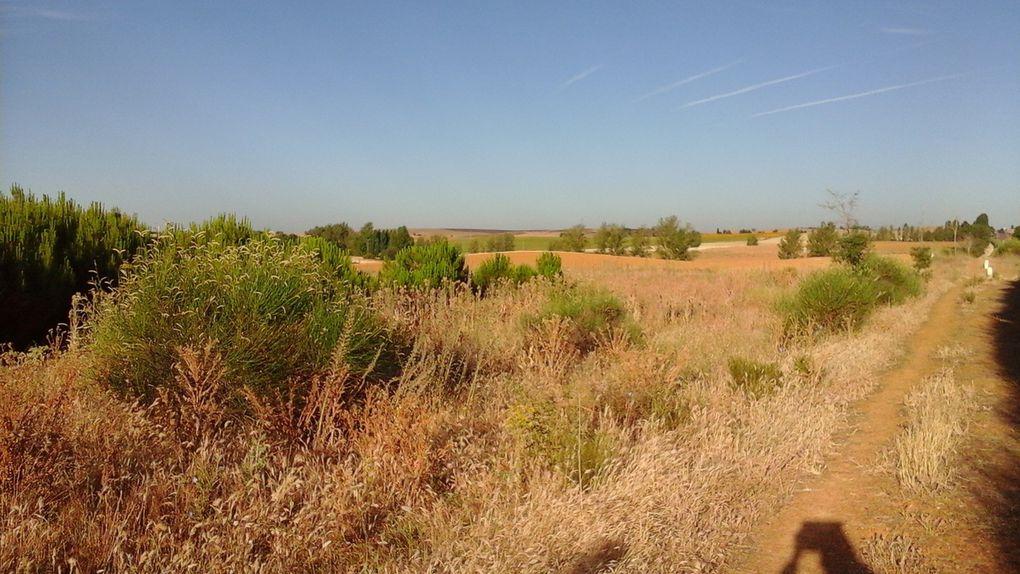 Sur la 4ème photo, la base de la colline laisse voir plusieurs portes donnant sans doute accès à des caves.