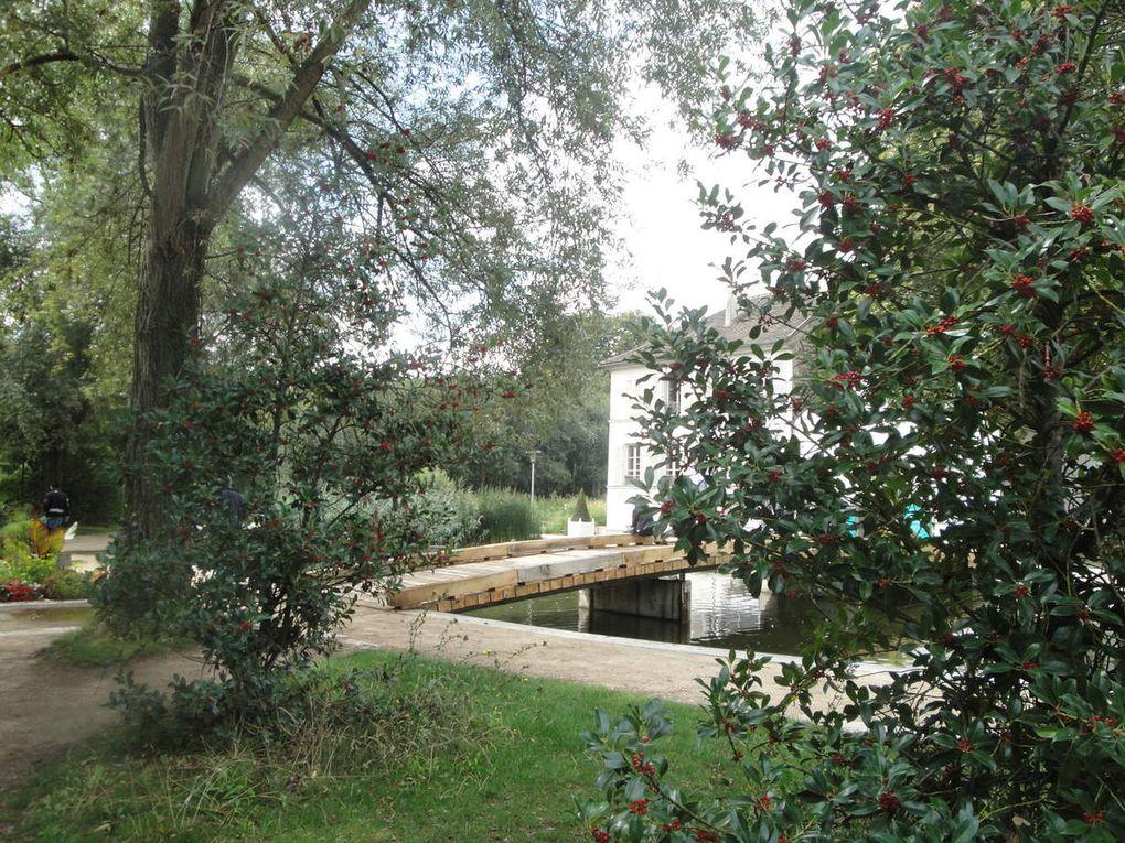 Un sculpture avant-gardiste, des petits ponts, un héron à sa toilette, des canards, un havre de paix japonisant, des gîtes à insectes et partout la verdure, l'eau et le calme dans un endroit pourtant très fréquenté.