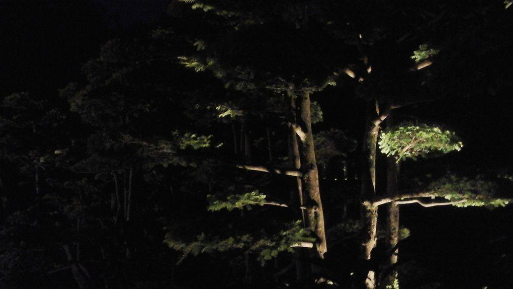 Entrée dans le parc à partir de 21h45, chaque visiteur est équipé de son lampion et peu à peu la nuit tombe et les lampions se posent en rang d'oignons pour écouter les contes