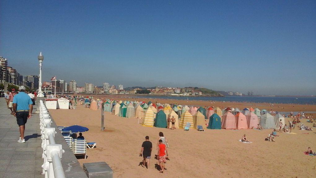 Une descente de plage insolite... la cohabitation...