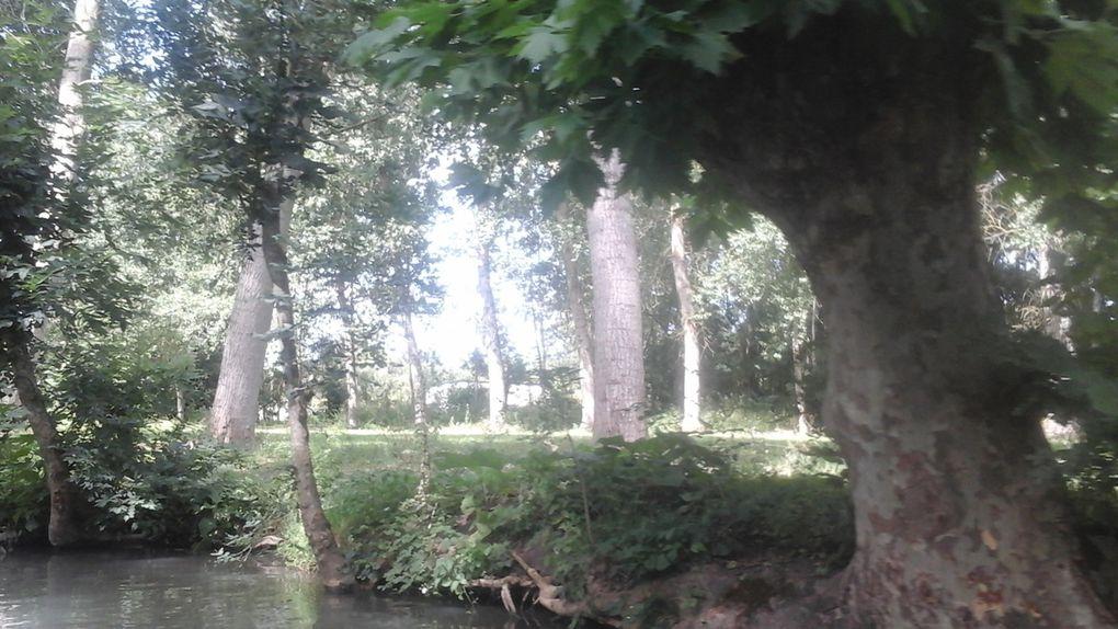 Première étape de vacances : le Marais Poitevin.