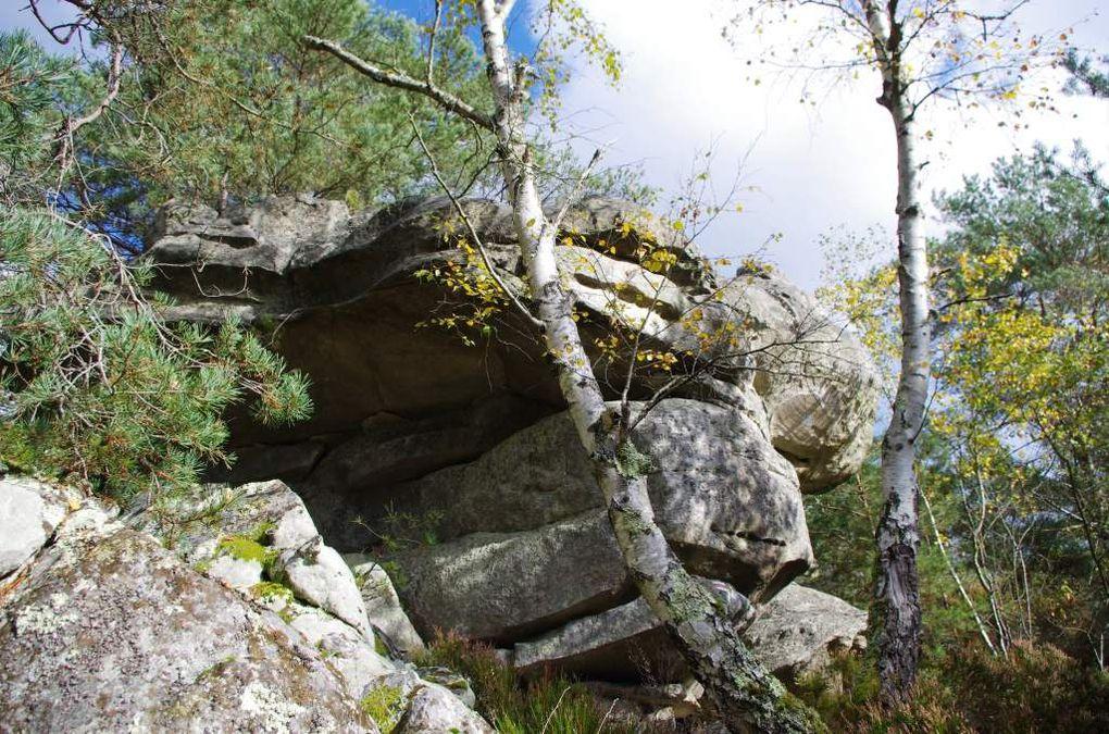 Fontainebleau-Avon-Bourron-Marlotte par Recloses, le GR11 et le GR13