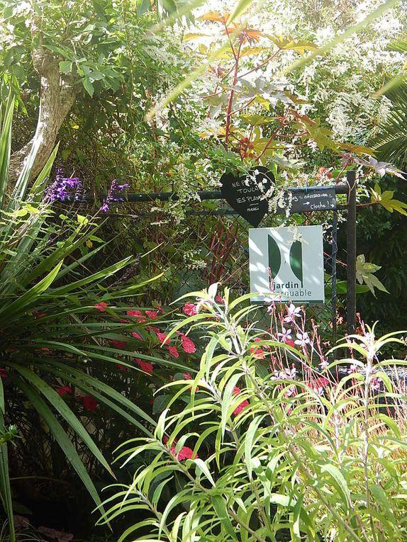 le jardin de la Boirie, à St Pierre d'Oléron