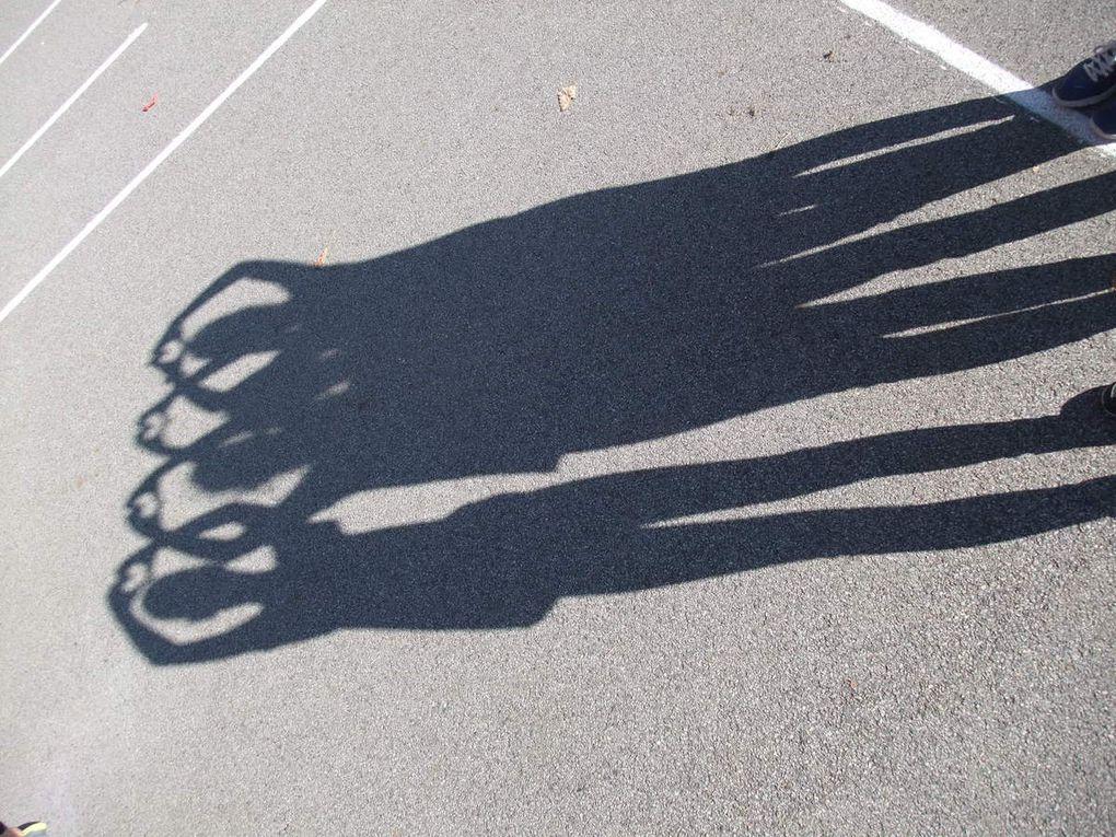 Les CM2 et les ombres !