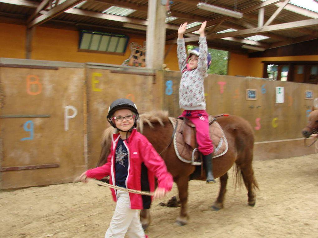Classe poney CE1 mardi 27 septembre 2016
