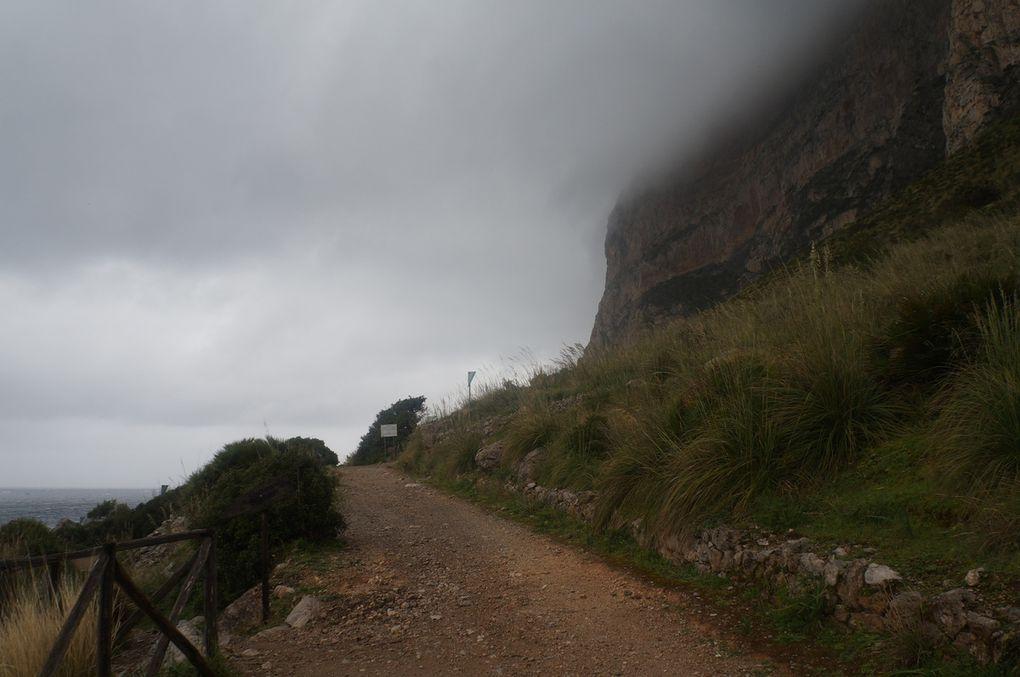 Una passeggiata-corsa nel territorio della RNO Capo Gallo (Barcarello). A volte la corsa ritorna