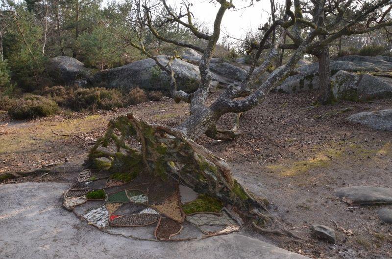 Stage animé par Marc Pouyet et Maïté millieroux les 20, 21 et 22 mars dans la forêt de Fontainebleau