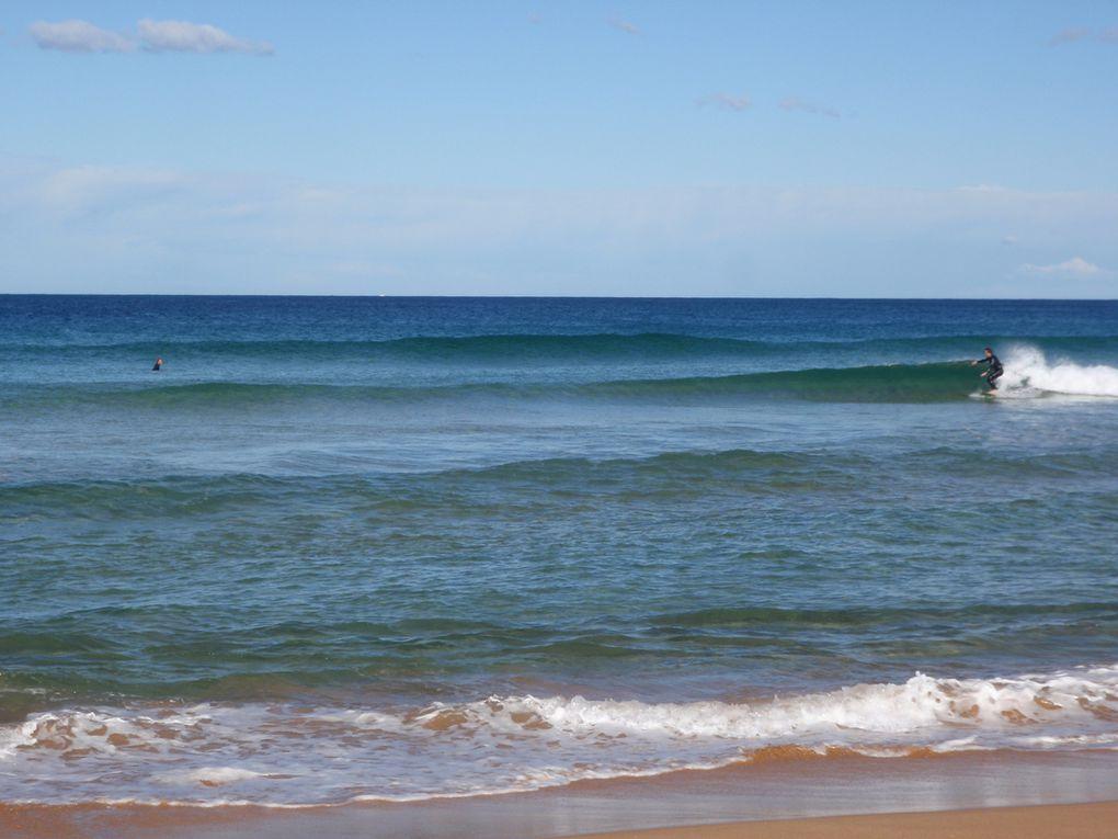 Successions de photos prises à Palm Beach... Plage, dreapeau, kite-surf...