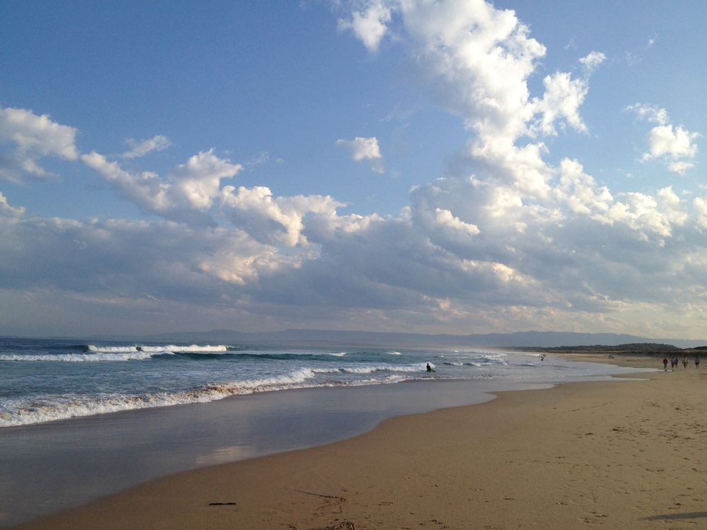 Shellharbour beach...