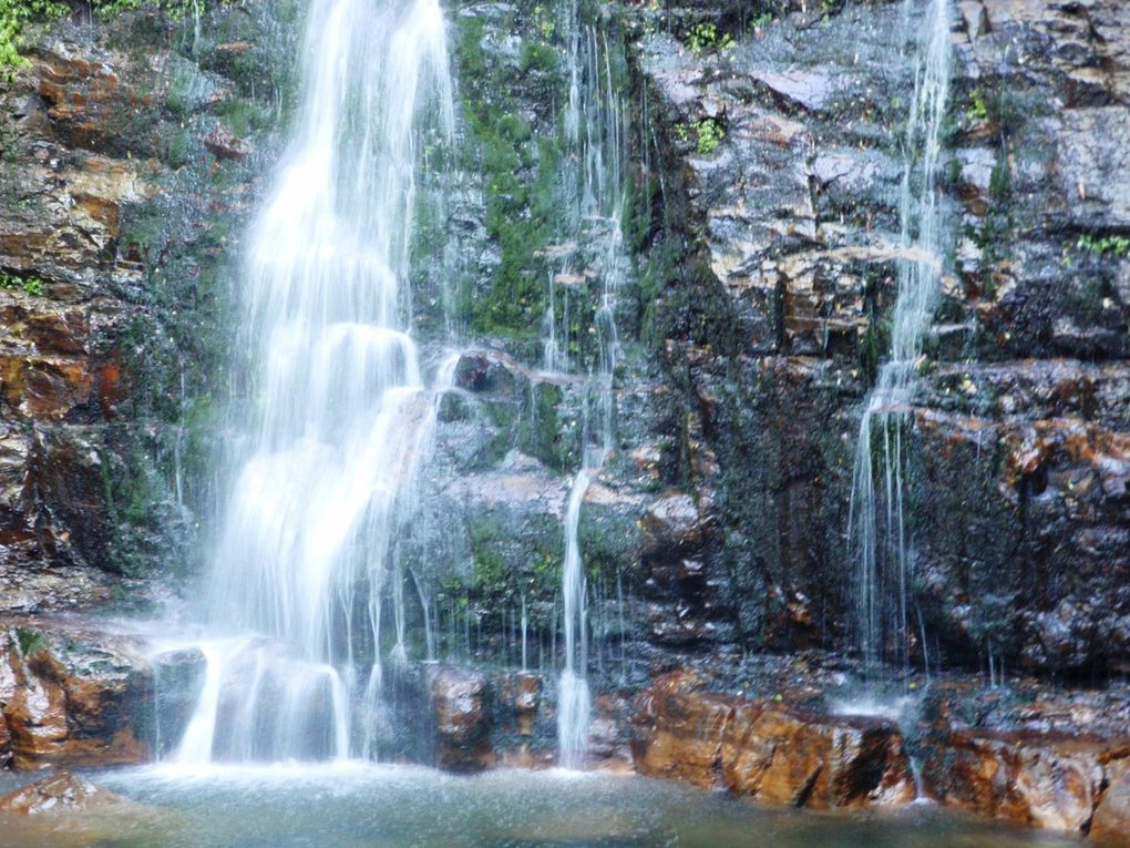 Minamurra falls...