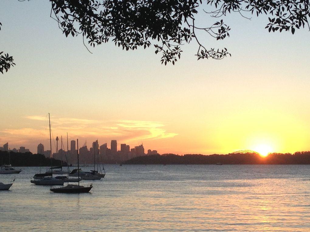 Coucher de soleil à Watson's bay lors de la visite de Fred et Cath' à Sydney... Evidemment on a partagé une petite bière avec vue sur la City...