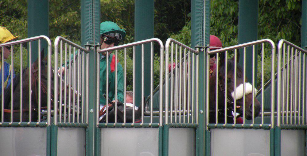 Longchamp (24.05.2015)