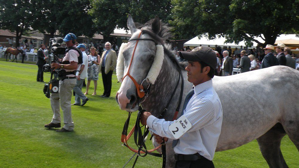 The Grey Gatsby (Eclipse Stakes)